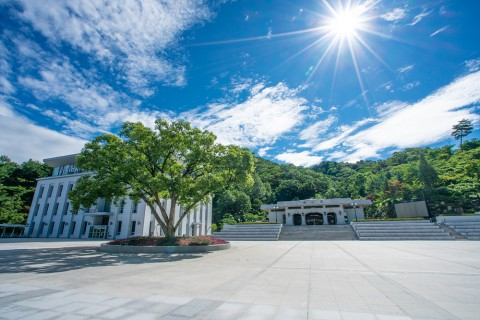 Scenery in Summer (a panoramic view over the training center), 2020.7.29